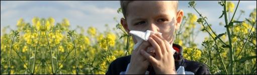 akupunktur århus allergi